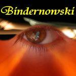 Bindernowski
