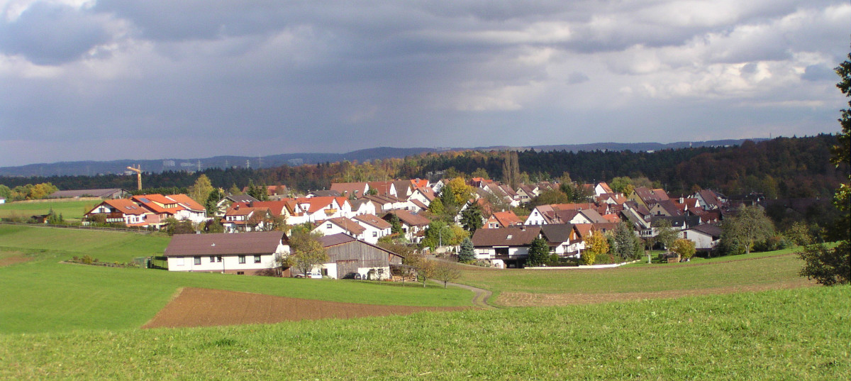 Lehenweiler 2008